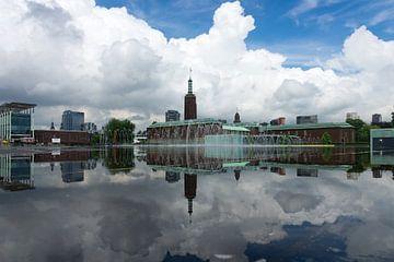 Museumpark van Rdam Foto Rotterdam