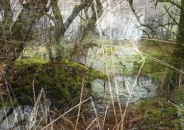 It's a jungle out there van Anita Snik-Broeken