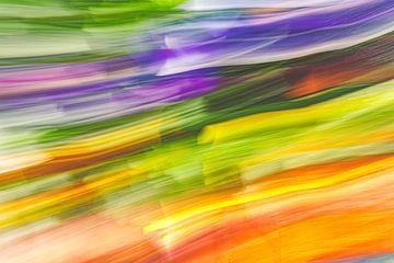 Regenbogen? von Jan Peter Jansen