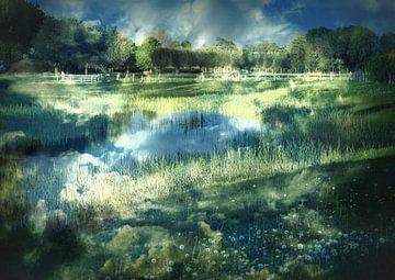 Ein kleiner See im Grünen von Anita Snik-Broeken