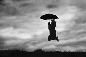 Vliegen in de storm