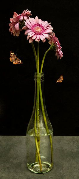 """Royal Gerbera Stilleven """"Gerbera in een glazen fles"""" van Sander Van Laar"""