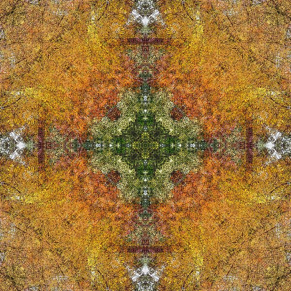 Autumn Cross van Frans Blok
