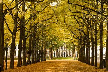 Toernooiveld in de herfst van Hans van Kuijk
