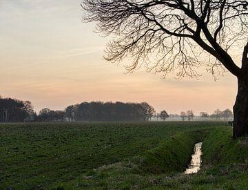 Hollandse pracht op de Brabantse wal  van bart Verboven