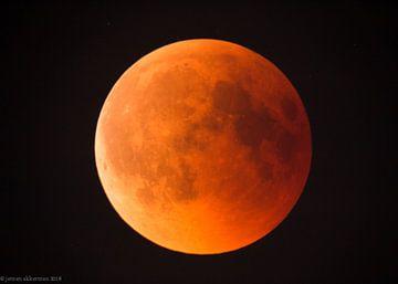 volledige maansverduistering, de rode maan von jeroen akkerman