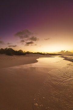 Klein Bonaire strand von Andy Troy