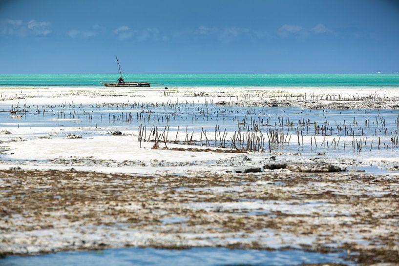 Visser in bootje in Afrika van Wesley Flaman