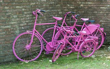 pink painted bikes and old wall van Compuinfoto .