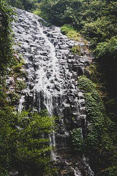Wasserfall im Regenwald von Ennio Brehm