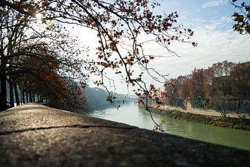 Landschapsfoto van de Tiber (Rome) van Natascha Teubl