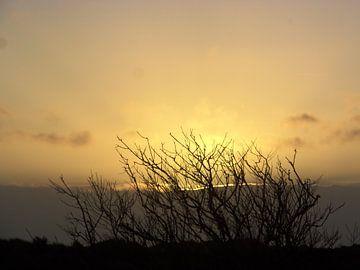 Ondergaande zon op Terschelling /setting sun van Margriet's fotografie
