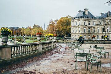 Palais du Luxembourg van Patrycja Polechonska