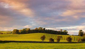 Yorskshire Dales Abendansicht, England von Adelheid Smitt