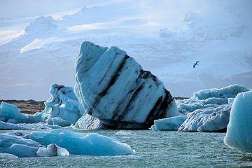 Drijvende ijsschots van Hannon Queiroz