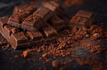 chocolade- en cacaopoeder op een donkere leisteenplaat, macrofoto, geselecteerde focus, smalle scher van Maren Winter