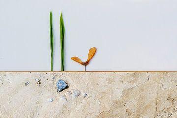 Paysage minimaliste sur Hannie Kassenaar