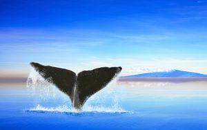 Walvisstaart op de oceaan met een eiland van