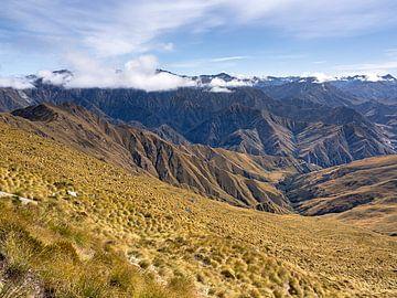 Grassen op de flanken van Mount Ben Lomond van Rik Pijnenburg