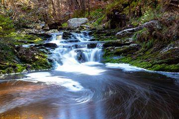 watervalletje in Hoëgne (Ardennen België) van Greet Thijs