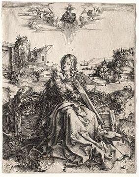 De Heilige Familie met de vlinder, Albrecht Dürer van De Canon