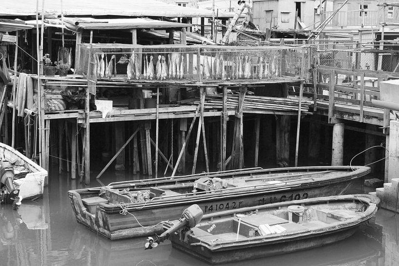 Vissersdorp Hongkong van Inge Hogenbijl