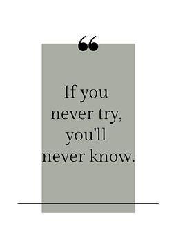 Poster 'Never try' in alle mogelijke kleuren! van Design by Tessa