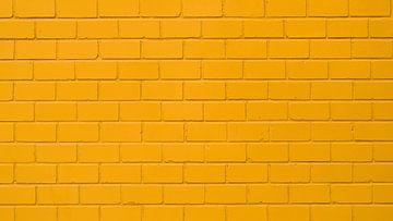 Gelbe Mauer von Günter Albers