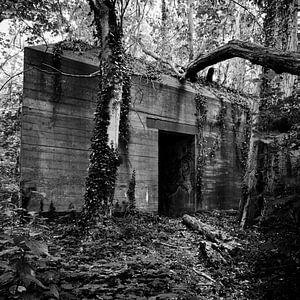 Bunker in de wildernis van