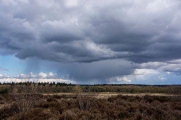 Na regen komt zonneschijn. After rain comes sunshine. van Helma de With