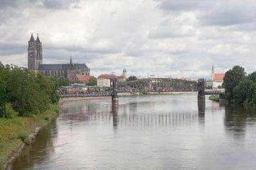 Uitzicht over de Elbe richting Magdeburg van t.ART