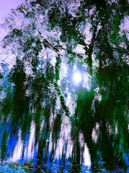 Tree Magic 51 - Fairy Colors van MoArt (Maurice Heuts)