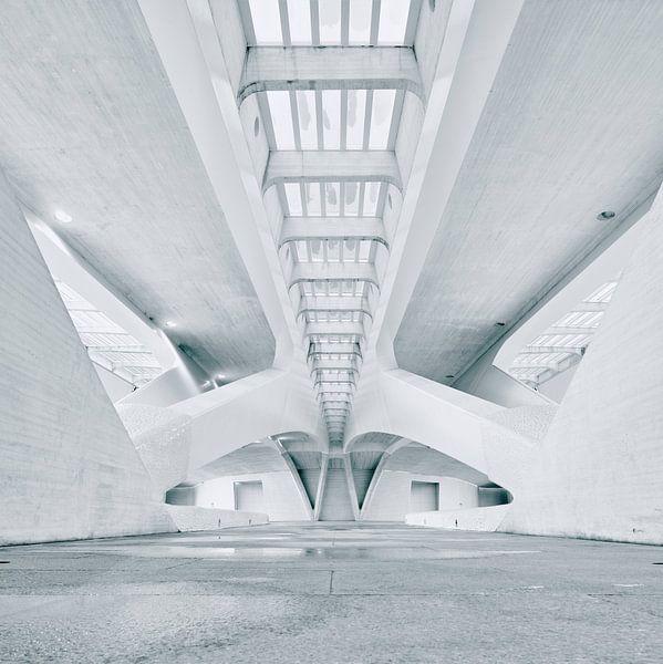 Palau de les Arts Reina Sofía, Valencia van David Bleeker