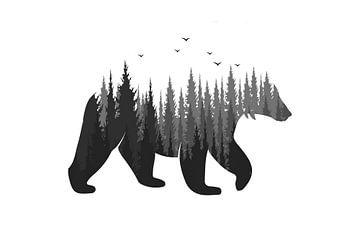 Bär im Wald von Felix Brönnimann
