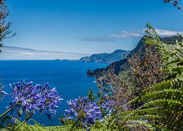 Bloemrijk zicht op de Oceaan ( Madeira) von Arie Jan van Termeij
