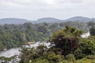 Surinamerivier von Peter Reijners