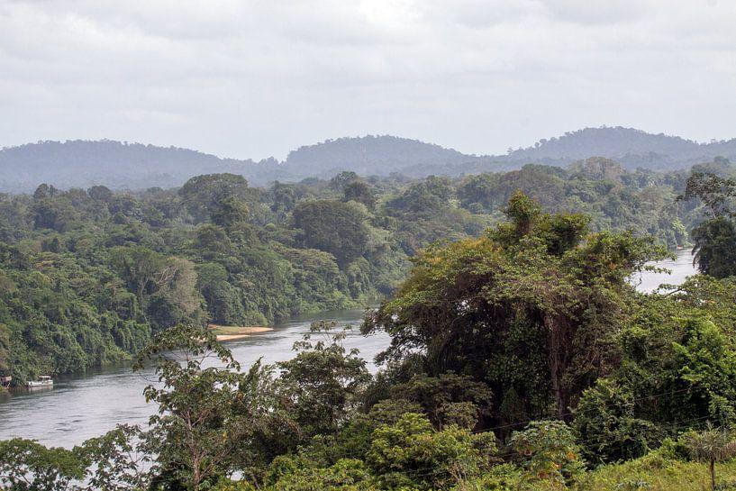 Surinamerivier van Peter Reijners