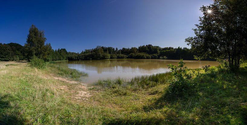 Panorama van de vijver in natuurgebied Kwintelooyen van Jacques Jullens