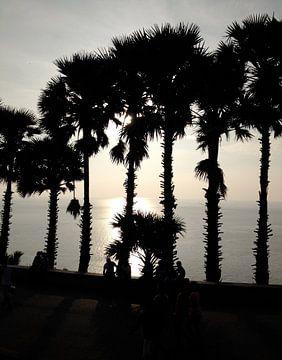 Sonnenuntergang Phuket Thailand van Pünktchenpünktchen Kommastrich