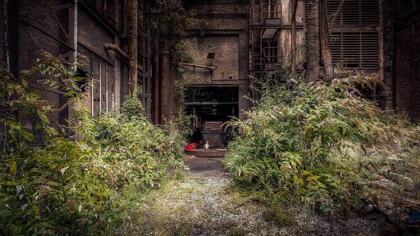 Verlassene Natur von Frans Nijland