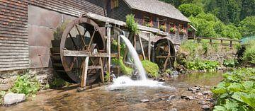 Hexenlochmühle im Schwarzwald von Markus Lange