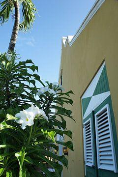 Vakantie op Curaçao van Ruth de Groot