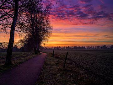 Kleurrijke Zonsopgang in Sint-Antonis van Bart cocquart