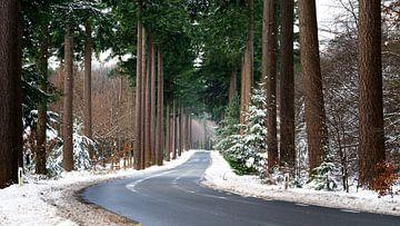 Schnee Straße von Sake van Pelt