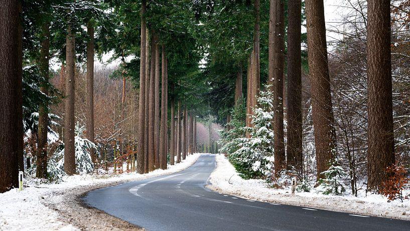 Sneeuwweg van Sake van Pelt