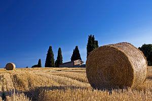Het Toscaanse Goud