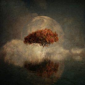 Traumlandschaft – Landschaft aus Ihren Träumen mit Vollmond und dem Meer von Jan Keteleer