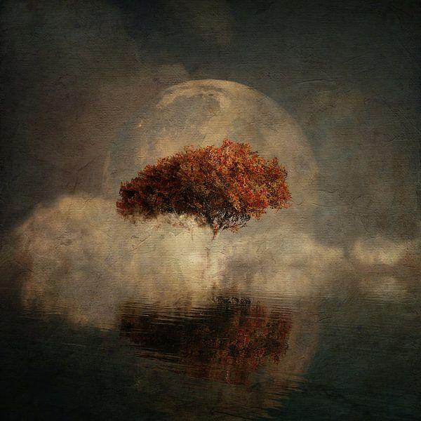 Droomlandschap – Landschap vanuit je dromen met een volle maan en de zeee van Jan Keteleer