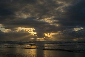 Stralen van licht aan het strand van Barbara Brolsma