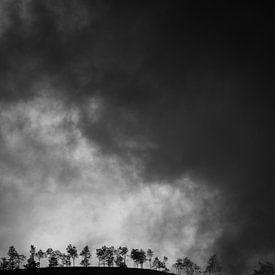 Foggy Hill van Insolitus Fotografie